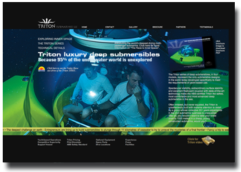 triton submarines web site design and development